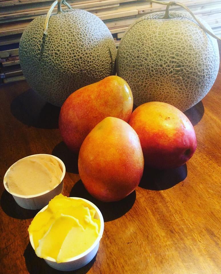 無農薬マンゴーとメロン