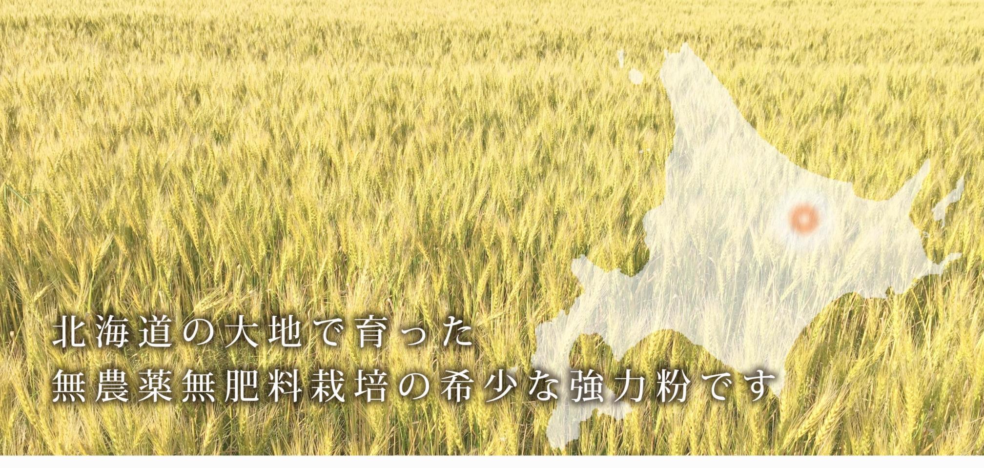https://gelato-naturale.com/wp-content/uploads/2018/05/kyouriki-gazou1-3-2016x959.jpg