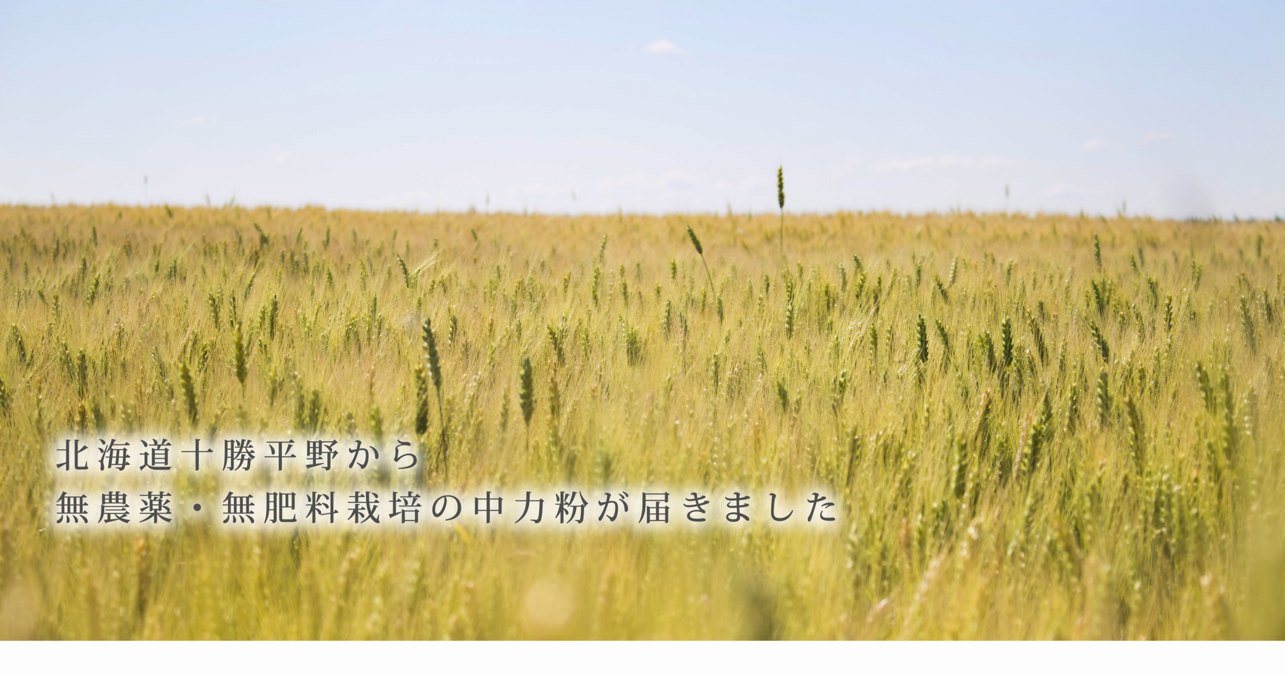 https://gelato-naturale.com/wp-content/uploads/2018/05/tokachiheiya2-2592x1363.jpg