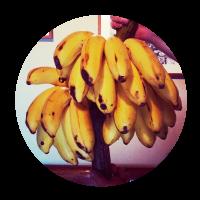 自然栽培 バナナのシャーベット