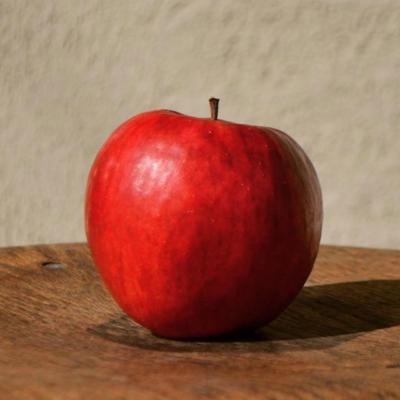 自然栽培りんごのシャーベット
